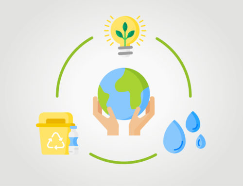 Alphanet Seguridad: responsables con el medio ambiente.